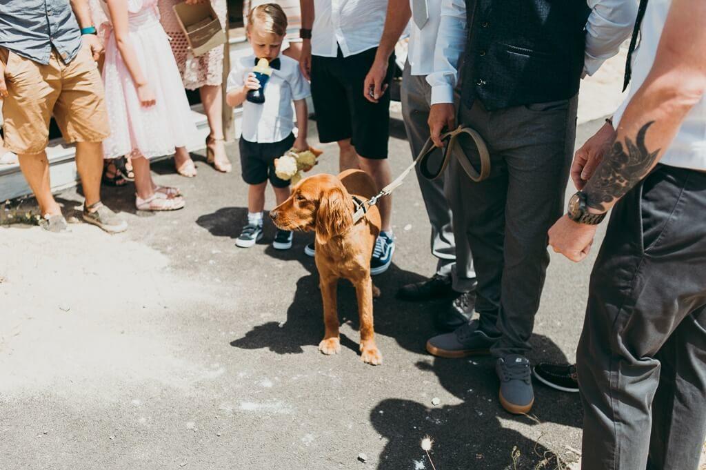 photographie mariage mimizan